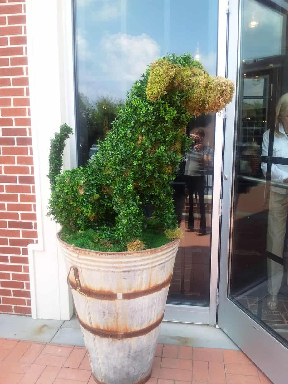 White Dog Cafe – Restaurant Review