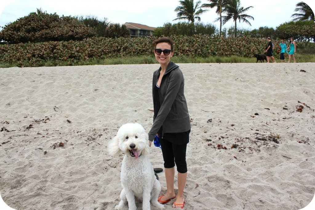 beachdog4