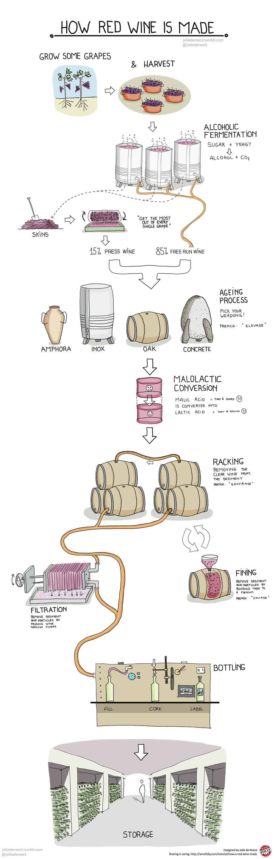 Wine-ing Wednesday – How Red Wine is Made!