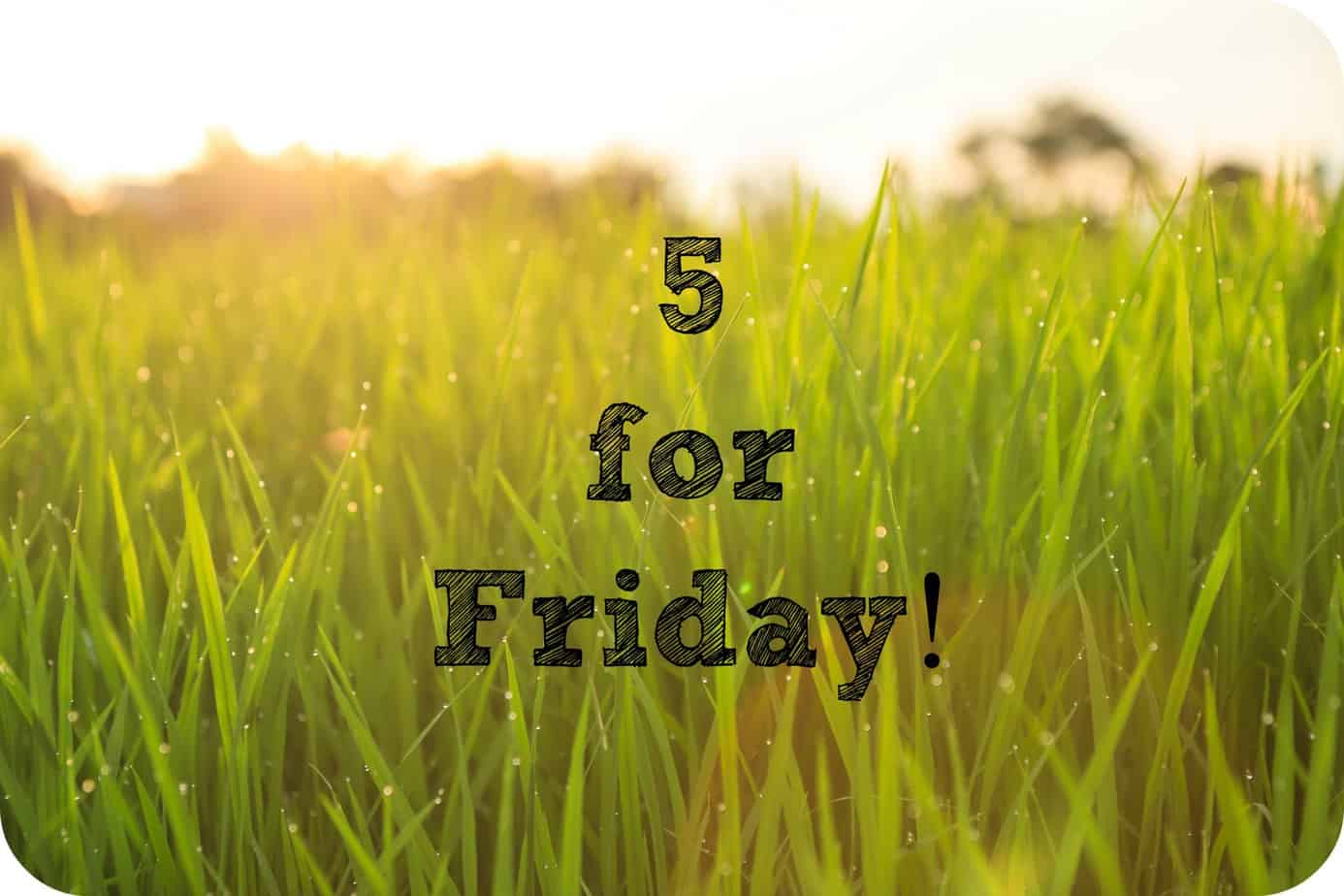 Five for Friday – January 30