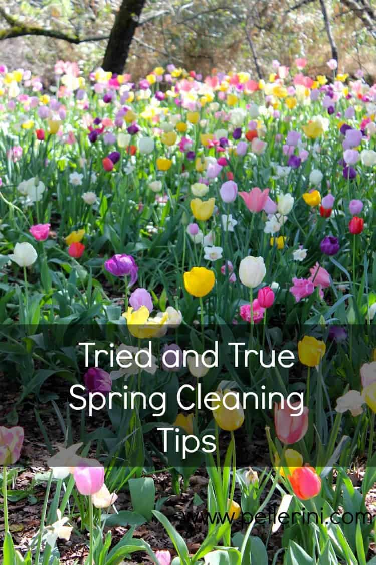 It's That Time of the Year – Spring Cleaning!