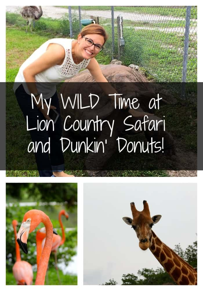 My WILD Time at Lion Country Safari and Dunkin' Donuts!