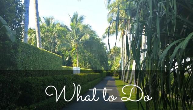 What to Do in Palm Beach: Palm Beach Lake Trail