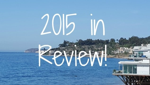 Pellerini – 2015 in Review