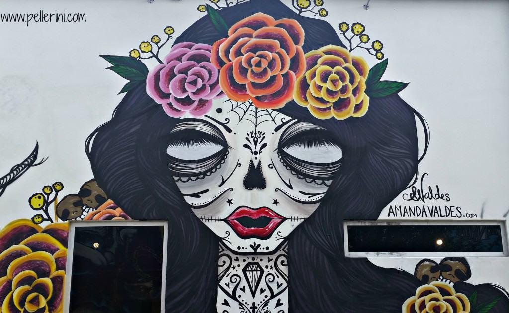 Amanda Valdes Canvas WPB Street Art
