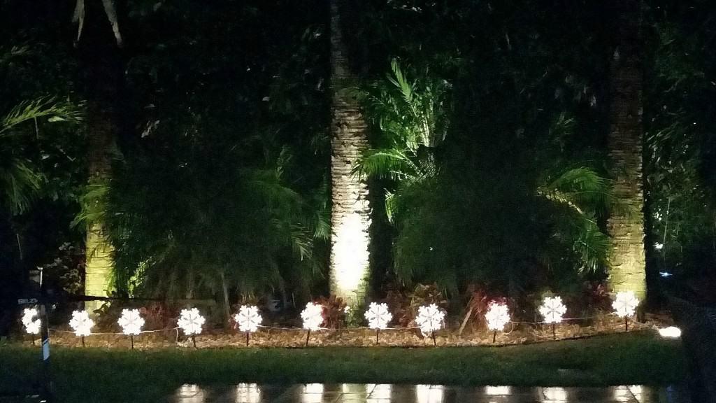 Backyard Snowflakes_White Party
