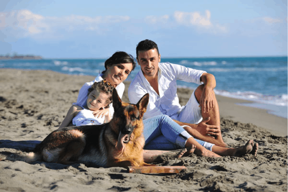 Family Travel Abroad