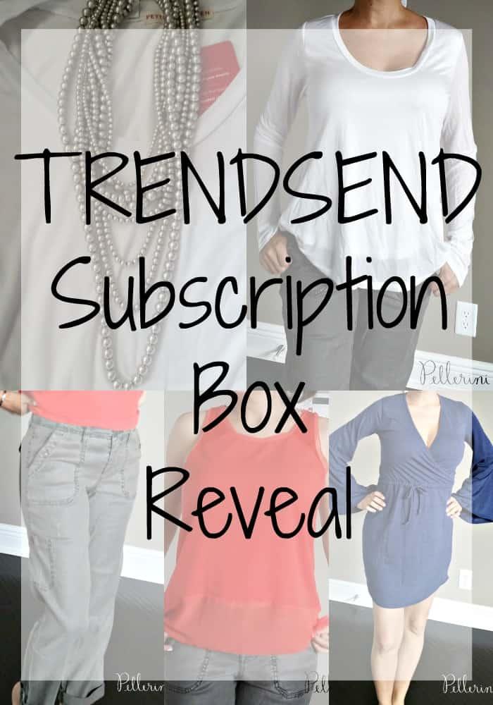 Trendsend Subscription Box Reveal
