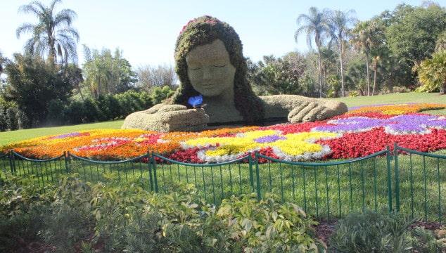 Family Trip: Busch Gardens Tampa Bay