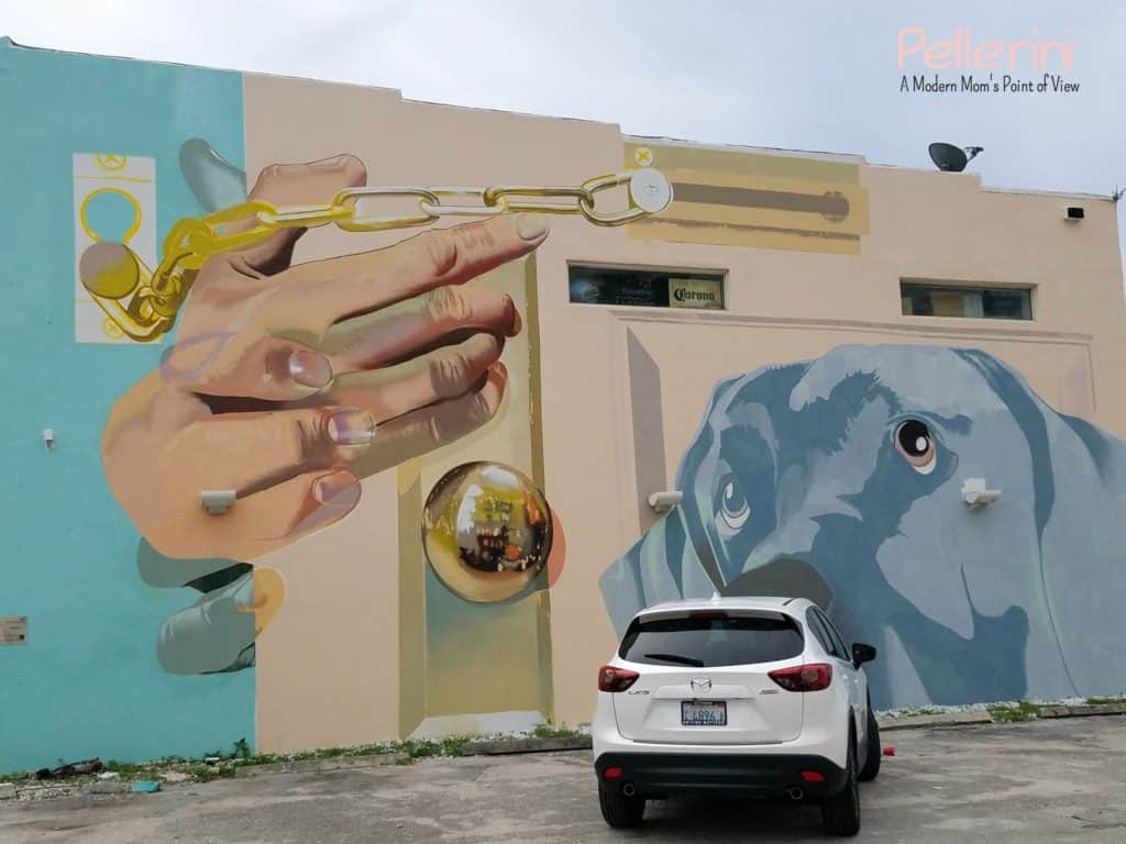 Mazda West Palm Beach Street Art Case