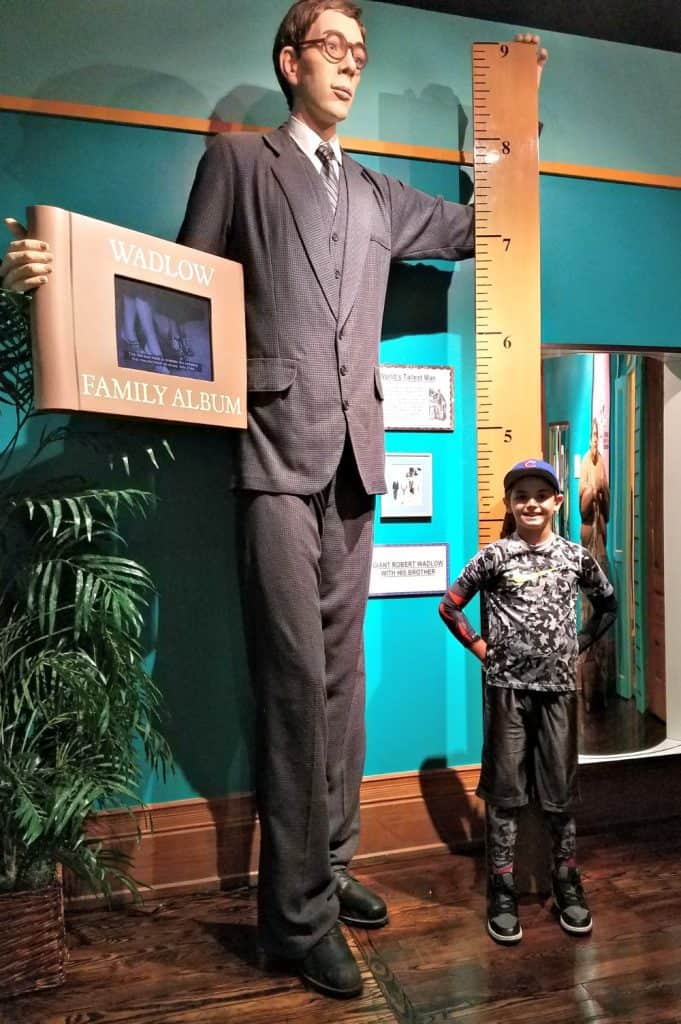 family friendly places in st. augustine - Ripley's Believe it or Not Tallest Man in the World