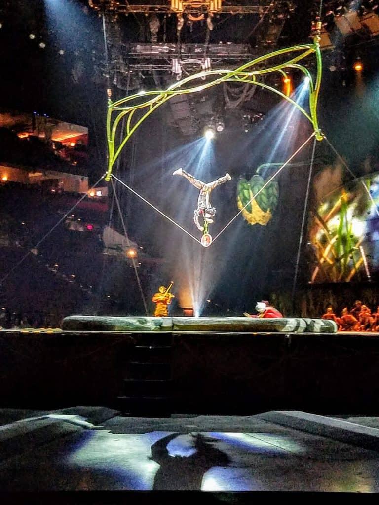 Cirque du Soleil Act