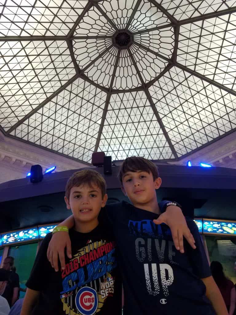 Chicago Family Vacation SHEDD Aquarium Caribbean Reef
