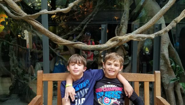 Chicago Family Vacation Part 3: Shedd Aquarium