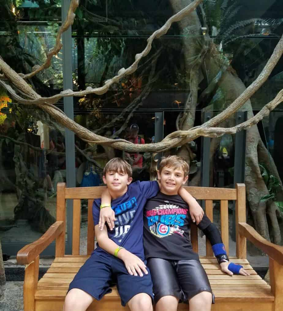 Chicago Family Vacation SHEDD Aquarium Amazon Rising