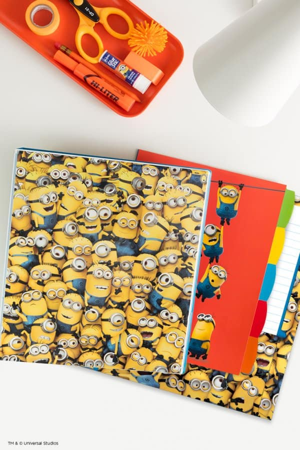Minions_Collection_736x1104