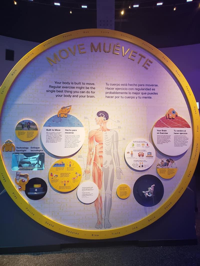 Frost Science Museum Exhibit