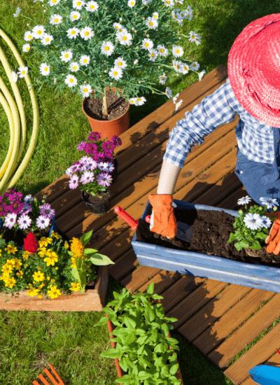 Best Basic Gardening Tools for Beginners